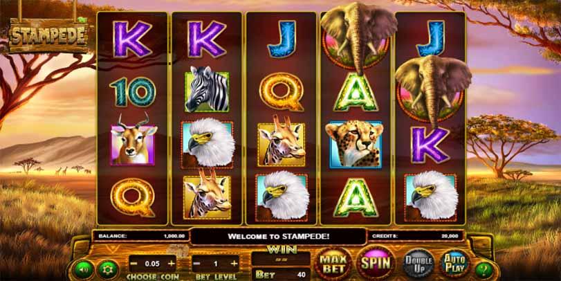 Stampede Slot Game Reels