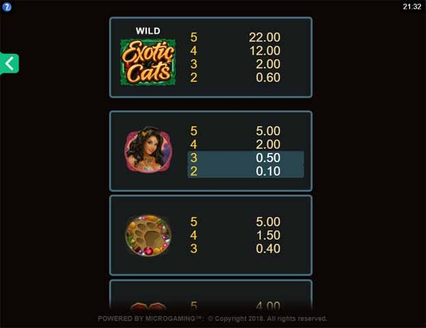 Exotic Cats Slot Bonus