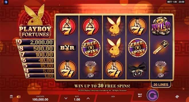 Playboy Fortunes Slot Reels